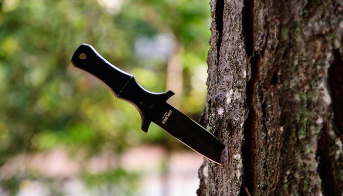 ВСочи под видом сувениров продавались метательные ножи