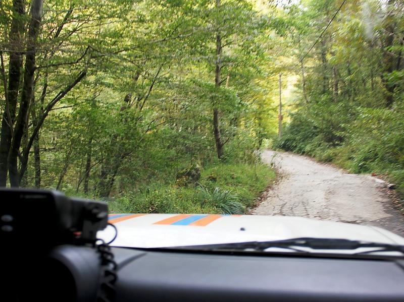 Турист заблудился всочинском лесу, пытаясь подняться нагору Дураков